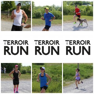 PicMonkey Collage - Terroir Run Top 3 2016